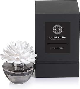 Zodax Illuminaria Porcelain Diffuser, African Marigold Fragrance