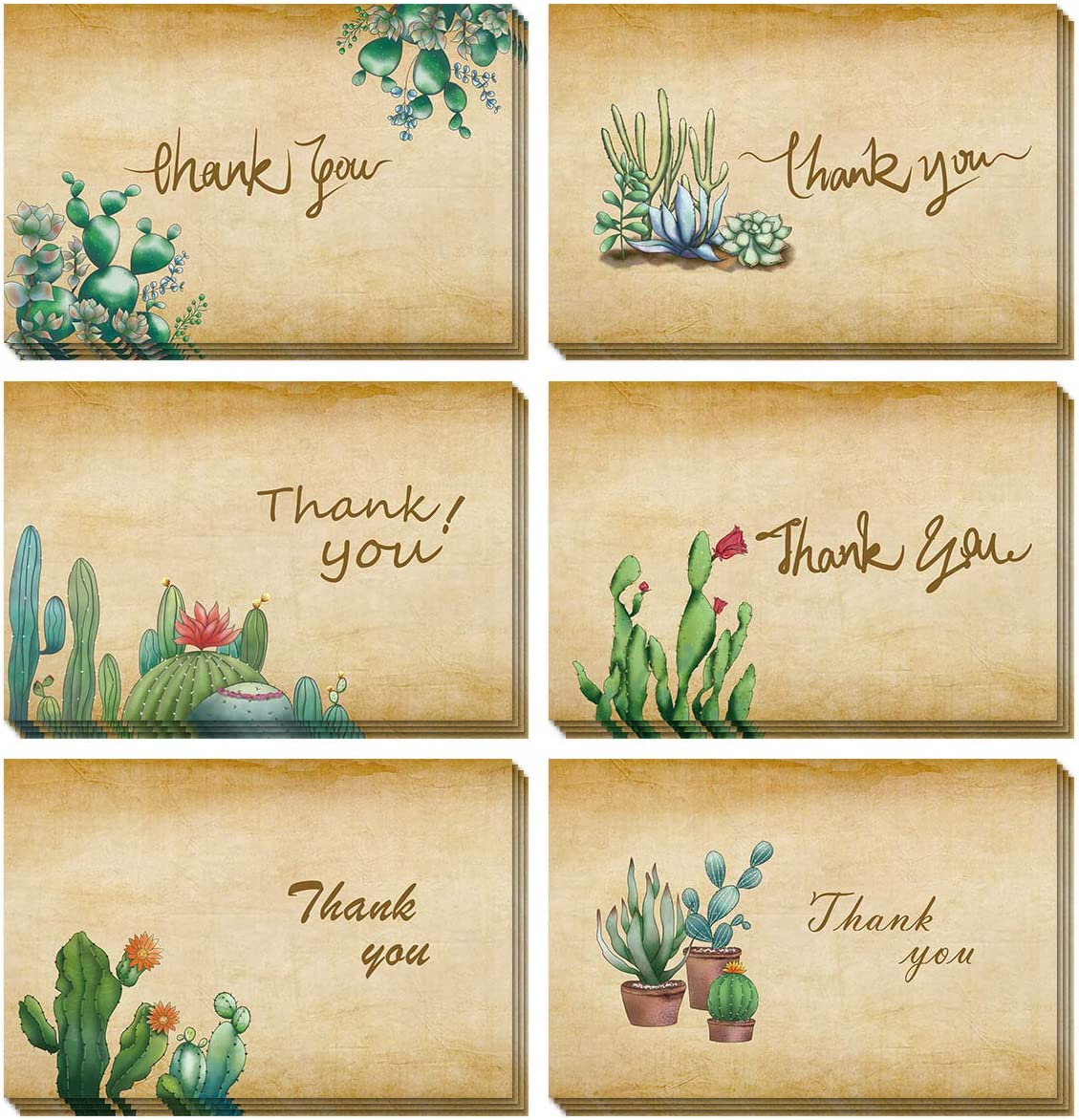 PaperKiddo 48 Thank You Cards with Envelops Thank You Stickers 6 Designs Cactus Thank You Notes Blank Card Bulk for Wedding Business Baby Shower Bridal Shower Graduation Sympathy Engagement 8X6""