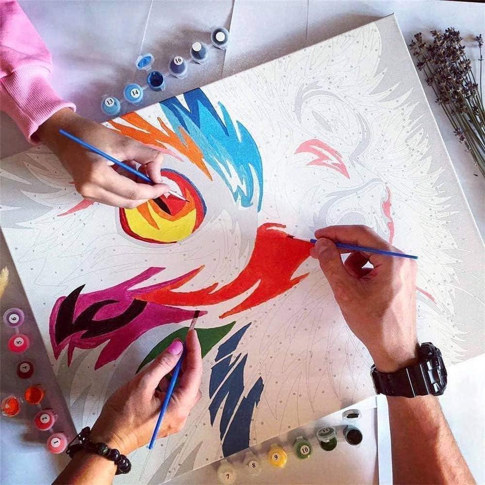 40 cm x 50 cm SULISO Intar por Numeros,DIY Painting by Numbers,Adults Kids Paint by Number Kits,Pinceles y Pinturas Decoraciones para el Hogar