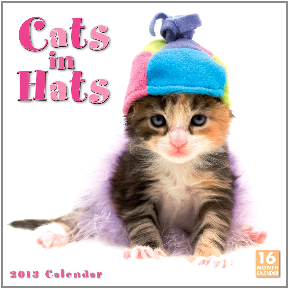 Download Cats in Hats 2013 Wall (calendar) ebook