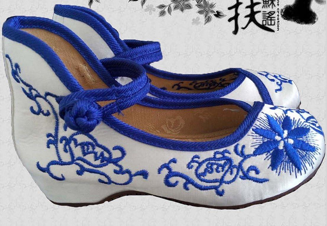 Tianrui Crown Girls Embroidery Flat Ballet Shoes Kids Cute Mary-Jane Dance Shoe Flat Sandal Shoe