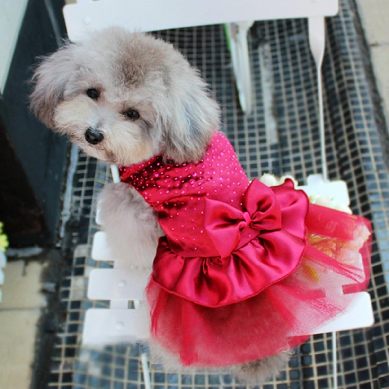 PanDaDa Dog Daisy Gauze Tutu Dress Skirt Dark Red L(Tag:XL) - 1