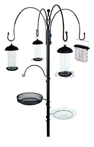 kingfisher bird feeding station garden. Black Bedroom Furniture Sets. Home Design Ideas