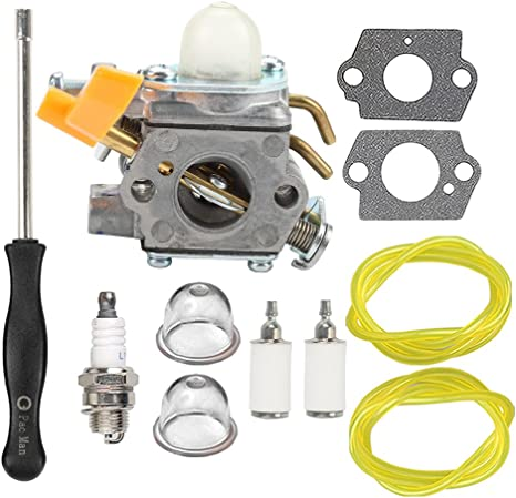 Amazon.com: HIPA 308054043 carburador + CARB Tune Up Kit de ...