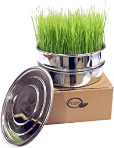 Stainless Steel Seed Sprouting Tray Set-8 Inch 3 Piece Stackable Sprouter Kit, Growing Fresh Organic Broccoli Sprouts, Wheat Grass, Alfalfa Seeds, Fenugreek, Mung Beans and More (Seeds not Included)