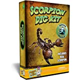 Scorpion Puzzle Dig Kit Excavate A Real Preserved