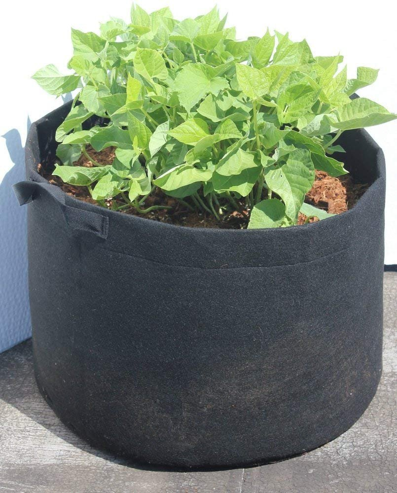 1 Gallon Plant Grow Bag, Aeration Fabric Pot with Handles for Nursery, Garden and Outdoor, Eco Friendly Heavy Duty Seedlings Pot by DynaPot, Black EcoGreenText PX1001