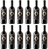 【チリワイン】モンスーン カベルネソーヴィニヨン&カルメネール 業務用12本セット