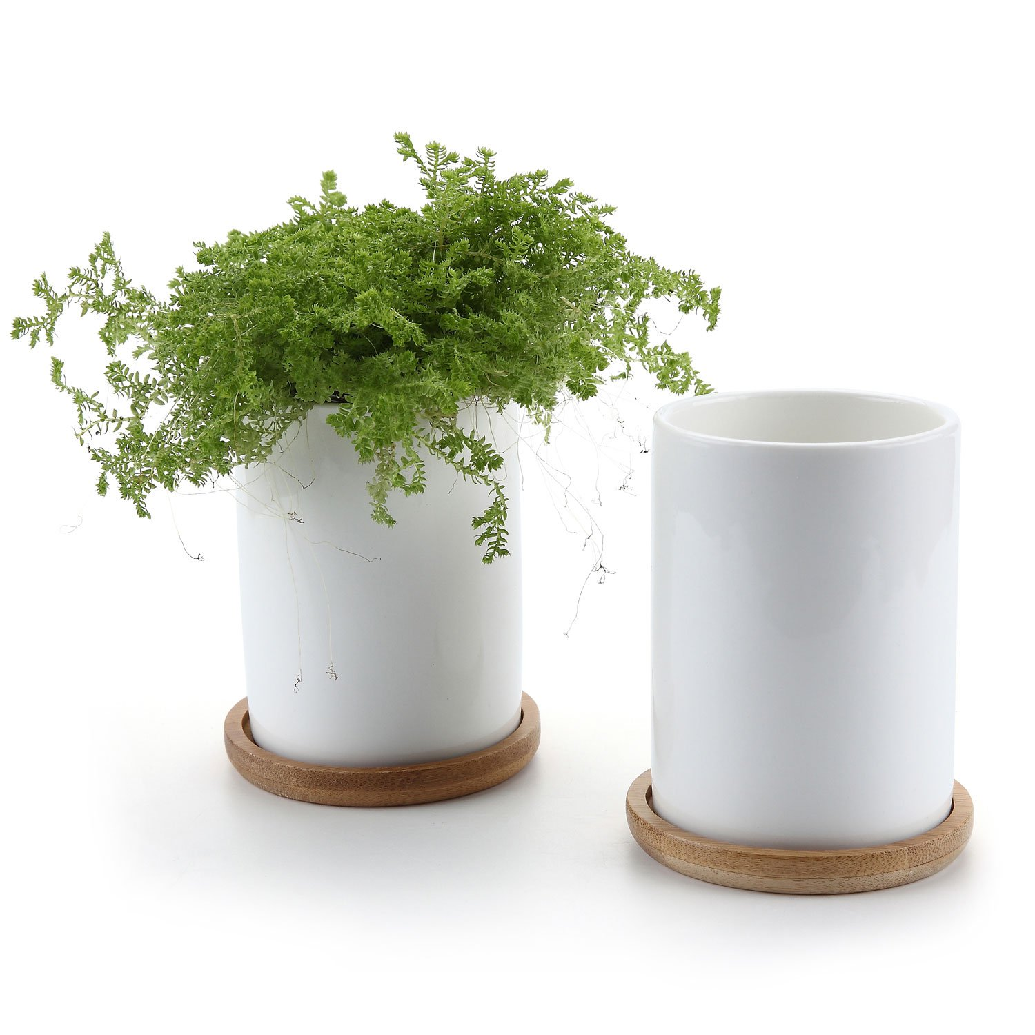T4U 2.75 Inch Ceramic White Cylinder Sucuulent Plant Pot Cactus Plant Pot with Free Bamboo Tray Package 1 Pack of 2
