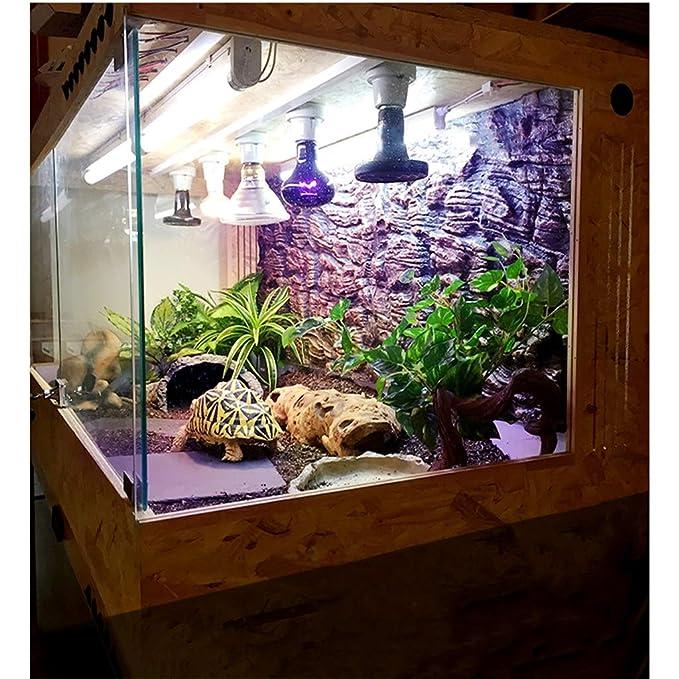 La cría de Reptiles Box, Vivarium Lagarto Tortuga Hábitat Jaula de ...