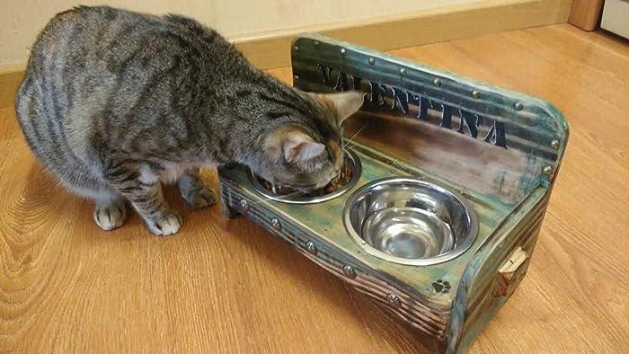 Comedero anti caída para perros y gatos Verde vintage