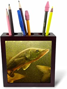 3dRose ph_13991_1 The Elusive Snook-Tile Pen Holder, 5-Inch