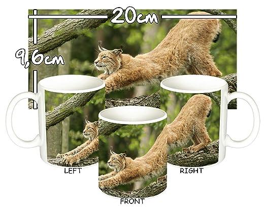 MasTazas Lince Lynx Taza Mug: Amazon.es: Hogar
