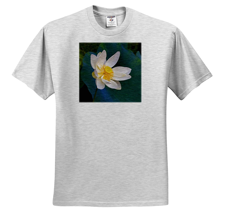 China 3dRose Danita Delimont Adult T-Shirt XL Lotus Flower ts/_312693 Guangxi Province Flowers
