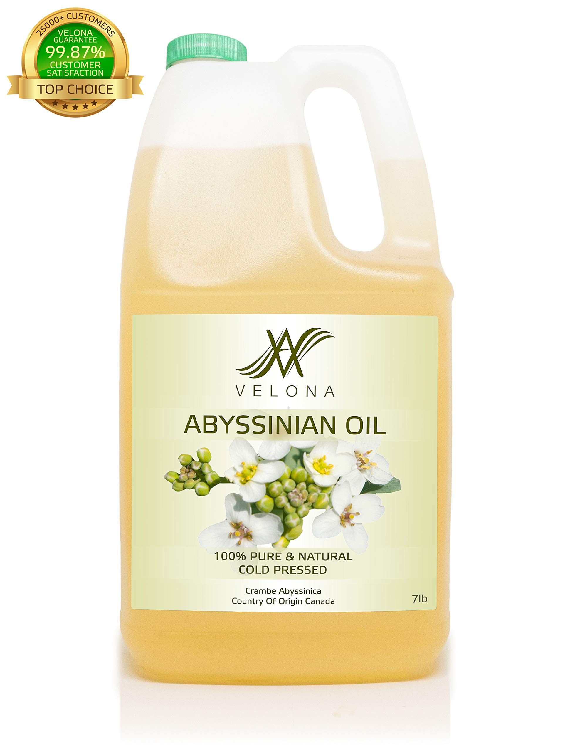Abyssinian Oil Natural Carrier Cold Pressed Fresh 100% Pure VELONA (7lb)