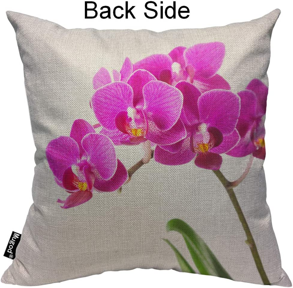 Amazon Com Mugod Dendrobium Throw Pillow Orchid Tropical Flowers Floral Elegant Pink Green White Cotton Linen Square Cushion Cover Standard Pillowcase 18x18 Inch For Home Decorative Bedroom Living Room Car Home Kitchen