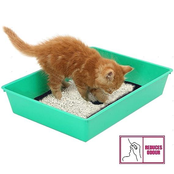 Spares2go - Filtro de carbón activo para gato, perro, bandeja de arena: Amazon.es: Hogar