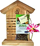 Mason Bee House for Solitary Bees - BONUS Viewing Window, Wildflower Seeds, Guide - Wooden Beeblock Bee Home Nest to Attract Wild Native Orchard Mason Bees, Leafcutter Bees to Garden – Great Gift