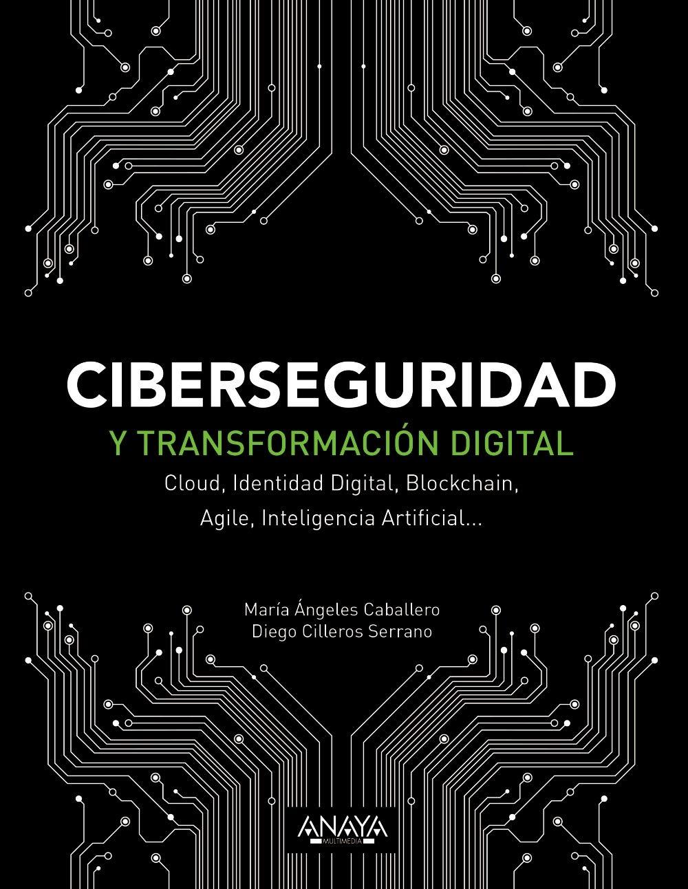 Ciberseguridad y transformación digital: Cloud Identidad Digital Blockchain Agile Inteligencia Artificial... (Títulos Especiales)