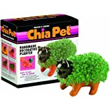 Chia Pet Kitten with Seed Pack, Decorative Pottery Planter, Easy to Do and Fun to Grow, Novelty Gift, Perfect for Any…