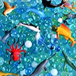 Water Beads Sea Animals Tactile Sensory Experience Kit - 24 Realistic
