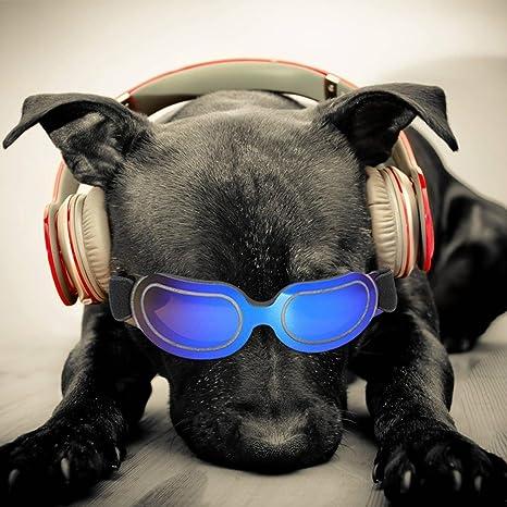 Leegoal Gafas de Sol Perro, Gafas de Sol Profesionales con protección UV con Banda Ajustable