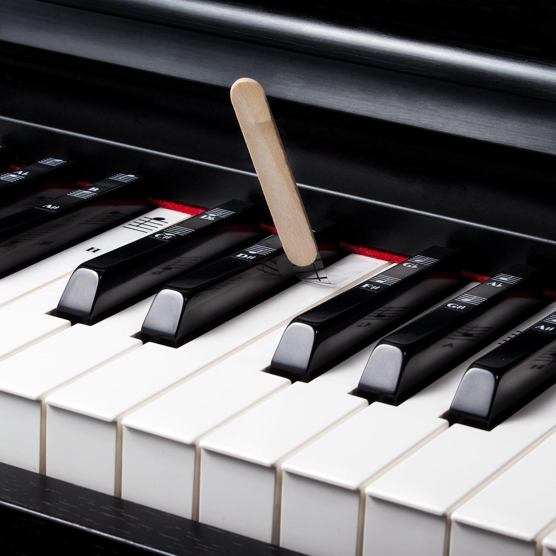 Pegatinas de aprendizaje para piano de 49 / 61 / 76 / 88 teclas: Amazon.es: Instrumentos musicales