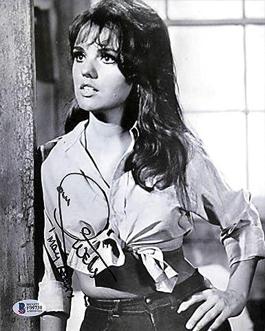 Dawn Wells actress