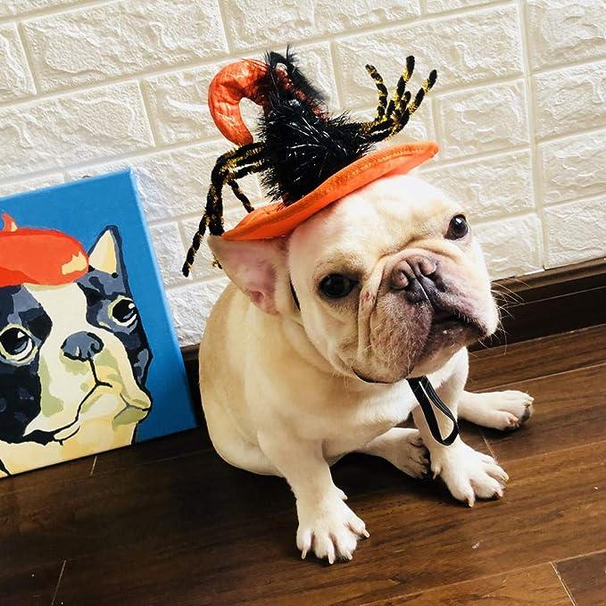 Xiangyun Mascota Perro vestirse Mascota arnés Tiro Decorativo ...