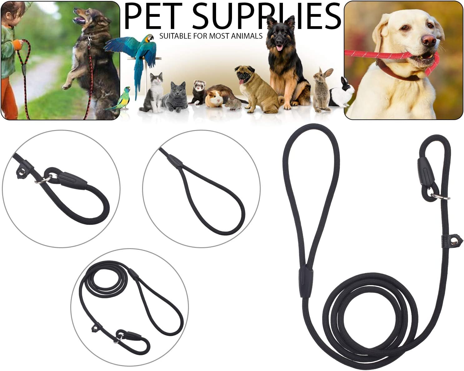 Blue 6mm Width BisLinks Puppy Dog Pet Lead Slip On Rope Leash Puppy Training Strong Nylon No Collar Needed