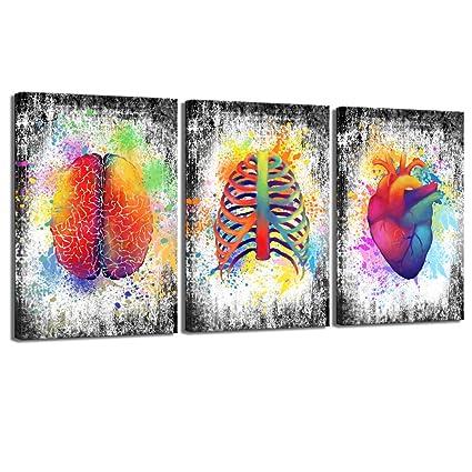 Amazon Com Sechars 3 Piece Canvas Wall Art Abstract Human