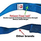 Dutchy Brand Pets Lovers Club Blue Dog Leashes