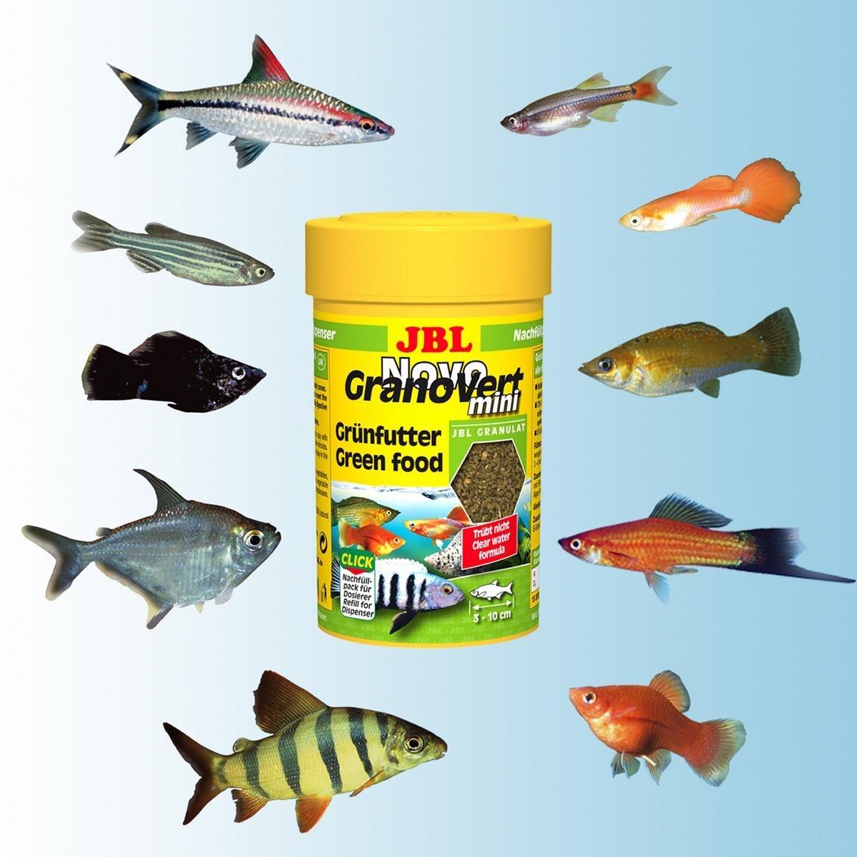JBL ALIMENTO COMPLETO PARA herbívoro PECES DE ACUARIO,granulado,novogranovert - 100 ml (Click): Amazon.es: Productos para mascotas