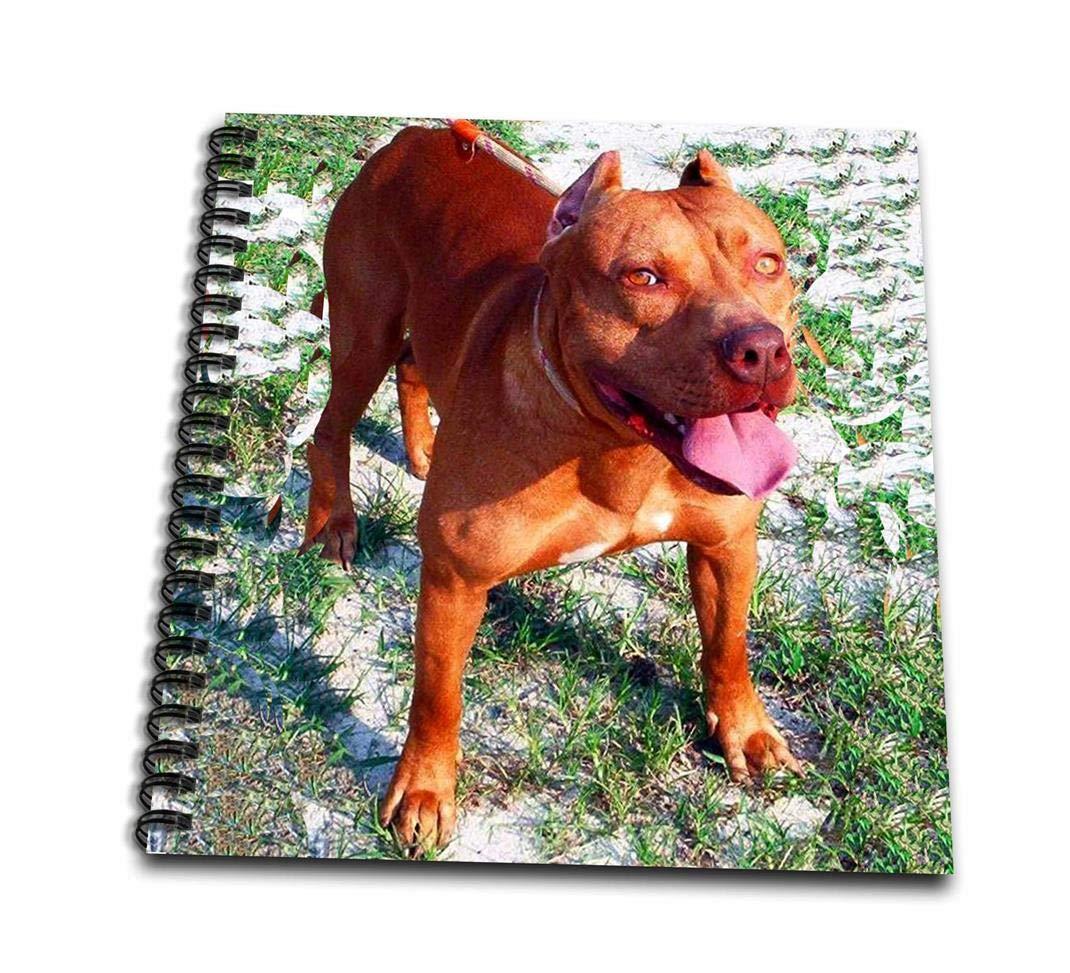3dRose Zeichenbuch, variiert, 8 x 8 cm db_1045_1