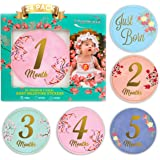 Baby Monthly Stickers-24 Floral Milestone Stickers with Shiny Metallic Gold Letters for Newborns   Celebrate 0-12 Months…