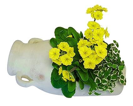 Pflanzgefass Amphore Liegend Aus Terracotta Blumentopf Garten Deko