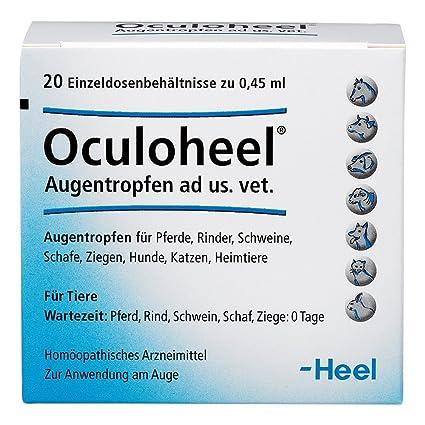 oculoheel augentropfen f.heim-/haus-/nutztiere 20 St