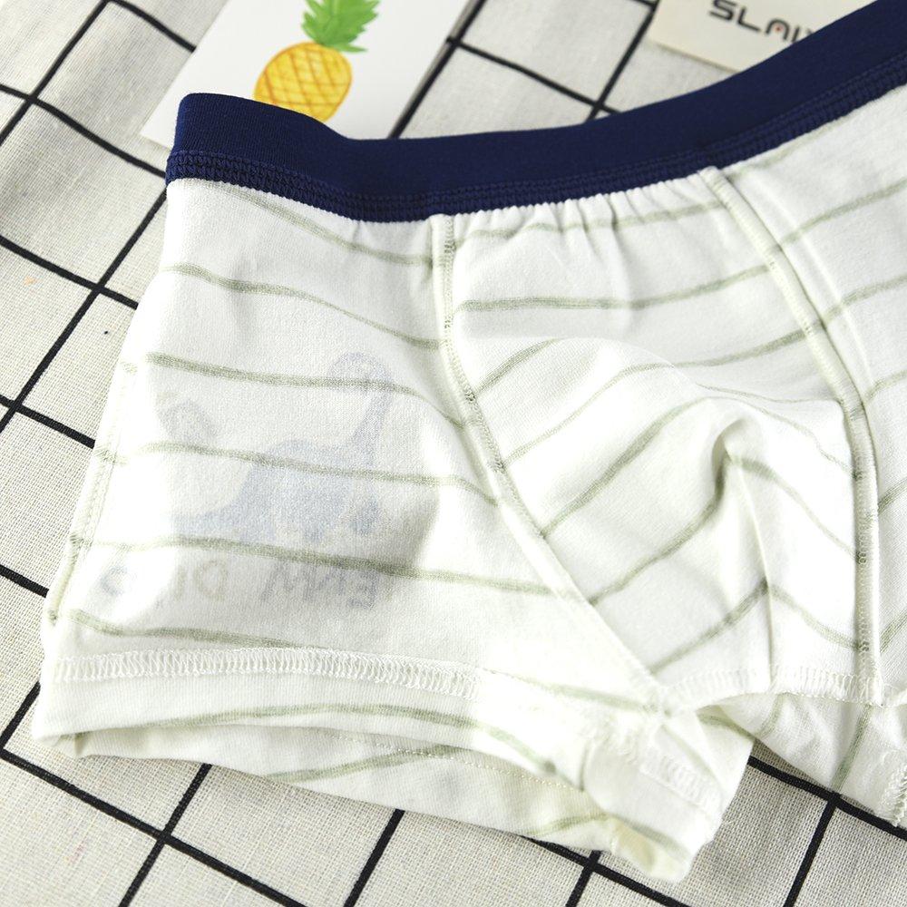 slaixiu Soft Cotton Kids Boxer Briefs Cartoon Boys Underwear Boxers 4-Pack (UW75-N1617-120)