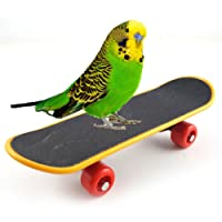 Bird Parrot Intelligence Toy Mini Training Skateboard for Parrot Budgie Parakeet Cockatiels Lovebird Conure Small and Medium Bird Funny Perch Toy