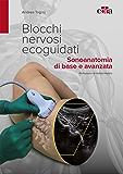 Blocchi nervosi ecoguidati: Sonoanatomia di base e avanzata