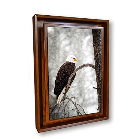 Amazon.com: Hidden Compartment Picture- Wall Mounted Type 1- Medium ...