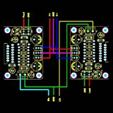 RingBuu DIY TDA7294 Mono Audio AMP Amplifier Board