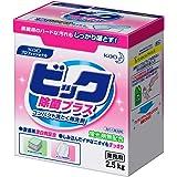 ビック 除菌プラス 2.5kg (花王プロフェッショナルシリーズ)
