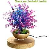 LED Levitating Air Bonsai Pot - Pathonor Magnetic Levitation Suspension Flower Floating Pot Potted Plant for Home Office Decor
