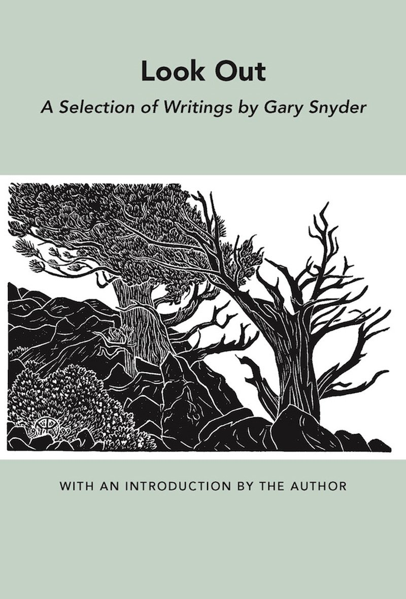 Download Look Out: A Selection of Writings (New Directions Bibelot) pdf epub