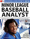 2018 Minor League Baseball Analyst