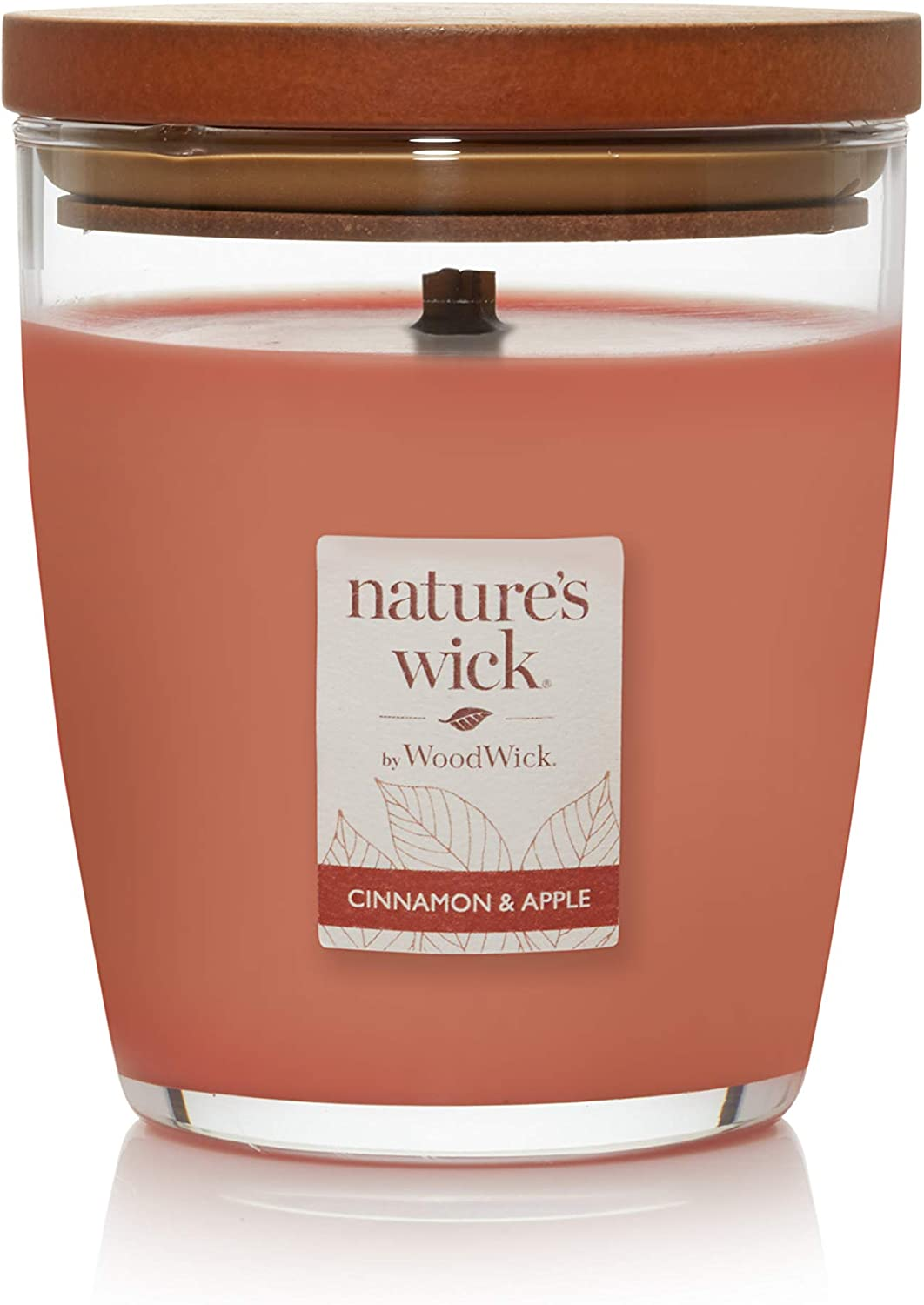 Nature's Wick Cinnamon & Apple Candle, 18 oz