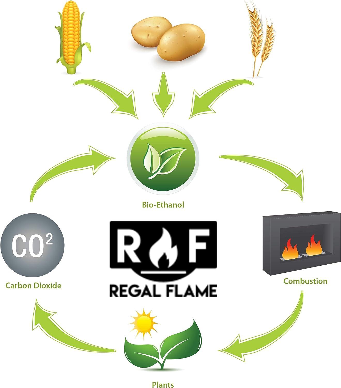 Regal Flame Bio-Ethanol Fireplace Fuel 12 Quart Bottles