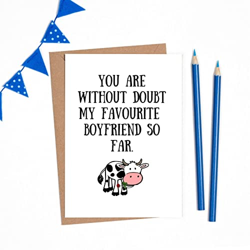 Funny Card For Boyfriend Boyfriend Birthday Card Funny Boyfriend