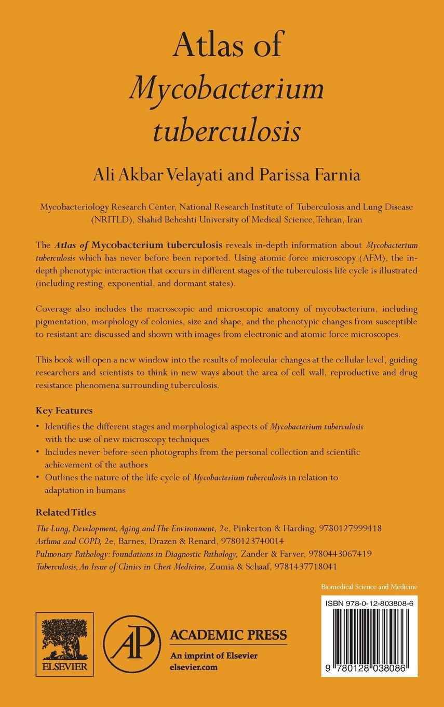 Atlas Of Mycobacterium Tuberculosis Ali Akbar Velayati Parissa